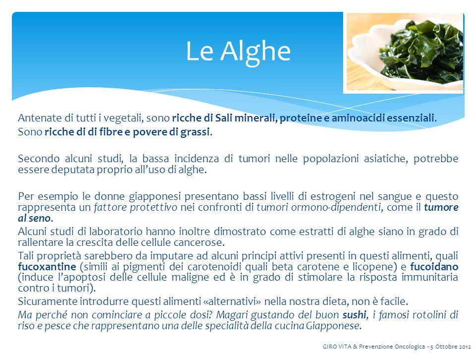 Antenate di tutti i vegetali, sono ricche di Sali minerali, proteine e aminoacidi essenziali.
