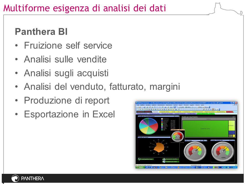 Multiforme esigenza di analisi dei dati Panthera BI Fruizione self service Analisi sulle vendite Analisi sugli acquisti Analisi del venduto, fatturato