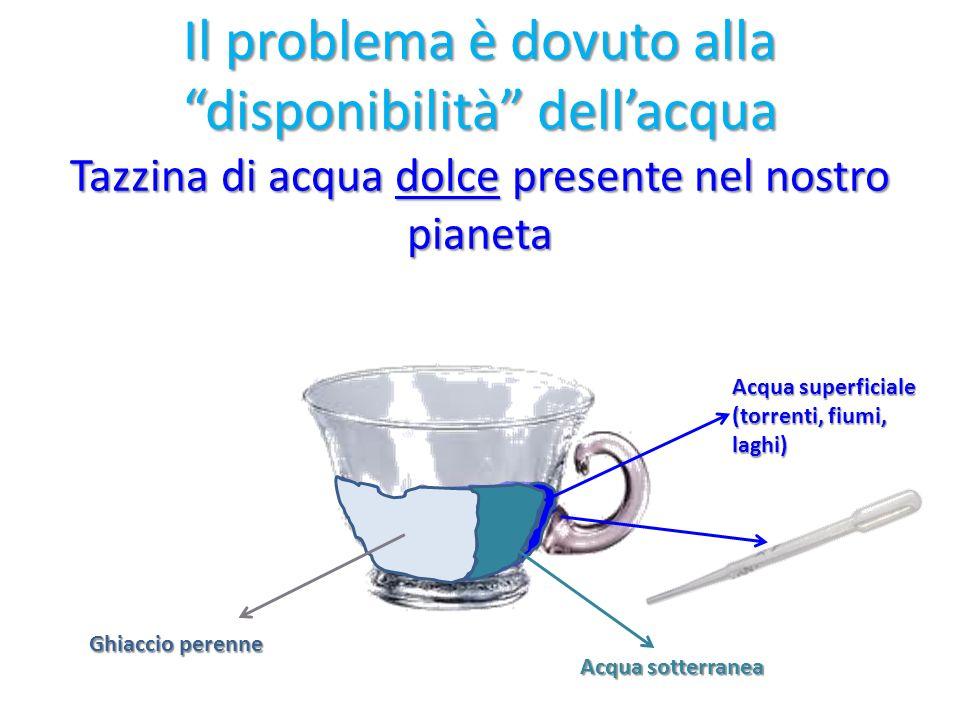 Il problema è dovuto alla disponibilità dellacqua Tazzina di acqua dolce presente nel nostro pianeta Ghiaccio perenne Acqua sotterranea Acqua superfic