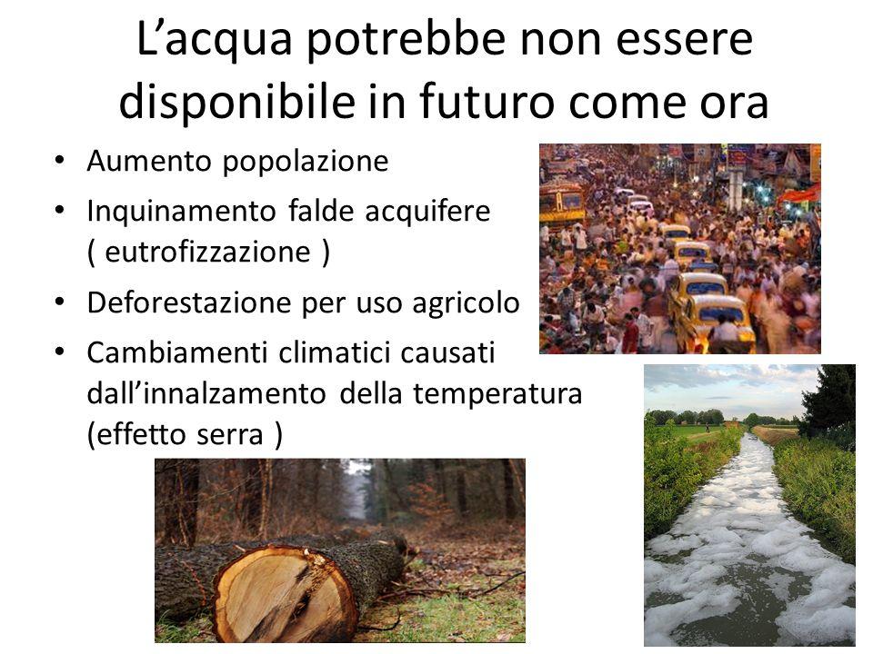 Lacqua potrebbe non essere disponibile in futuro come ora Aumento popolazione Inquinamento falde acquifere ( eutrofizzazione ) Deforestazione per uso