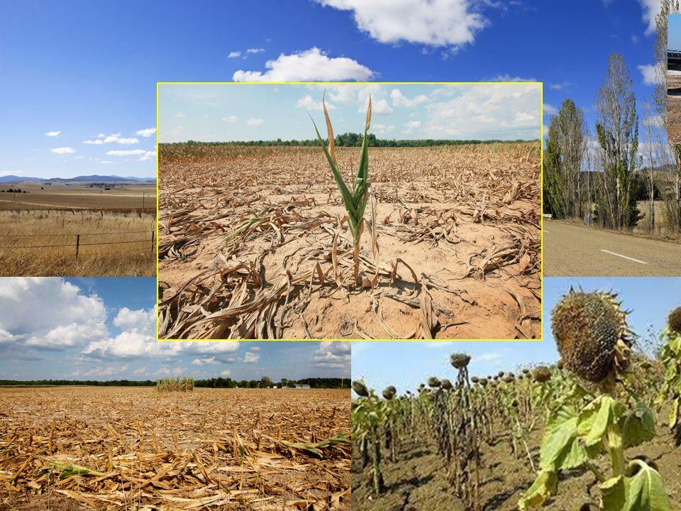 Laumento della temperatura provoca….. piogge intense alternate a lunghi periodi di siccità