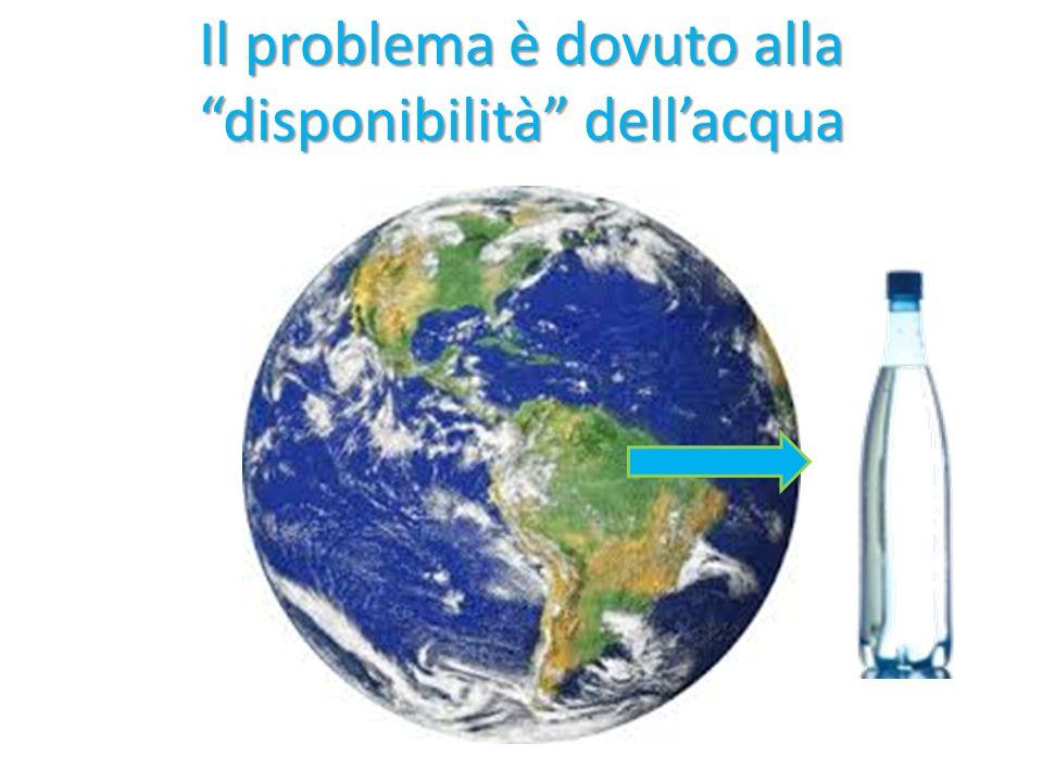 Acqua dolce Acqua salata Bottiglia di acqua, salata e dolce, presente nel nostro pianeta