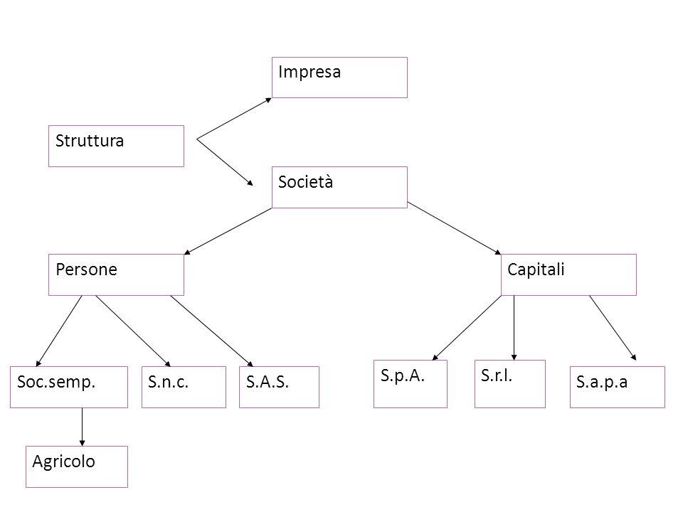 Struttura Impresa S.n.c. Persone S.A.S.Soc.semp. Capitali S.a.p.a S.p.A.S.r.l. Agricolo Società