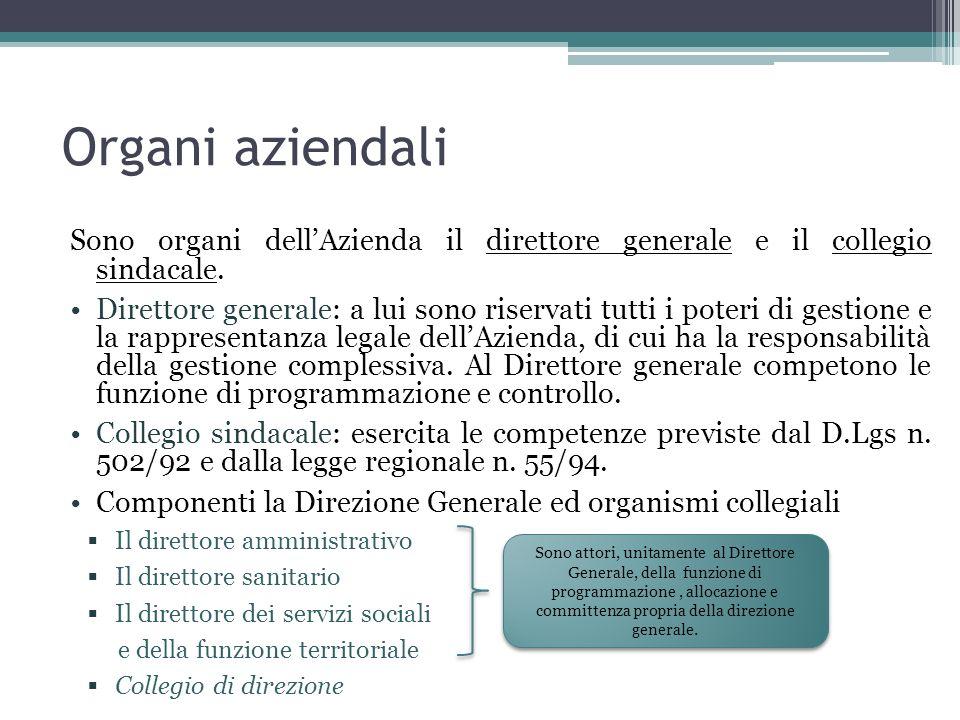 Organi aziendali Sono organi dellAzienda il direttore generale e il collegio sindacale.