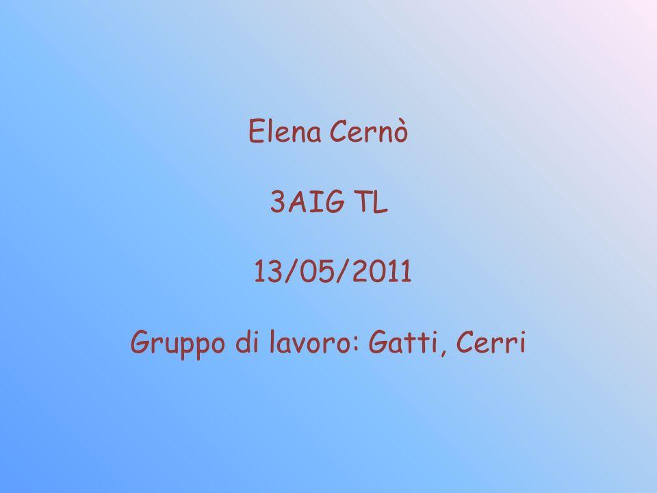 Elena Cernò 3AIG TL 13/05/2011 Gruppo di lavoro: Gatti, Cerri