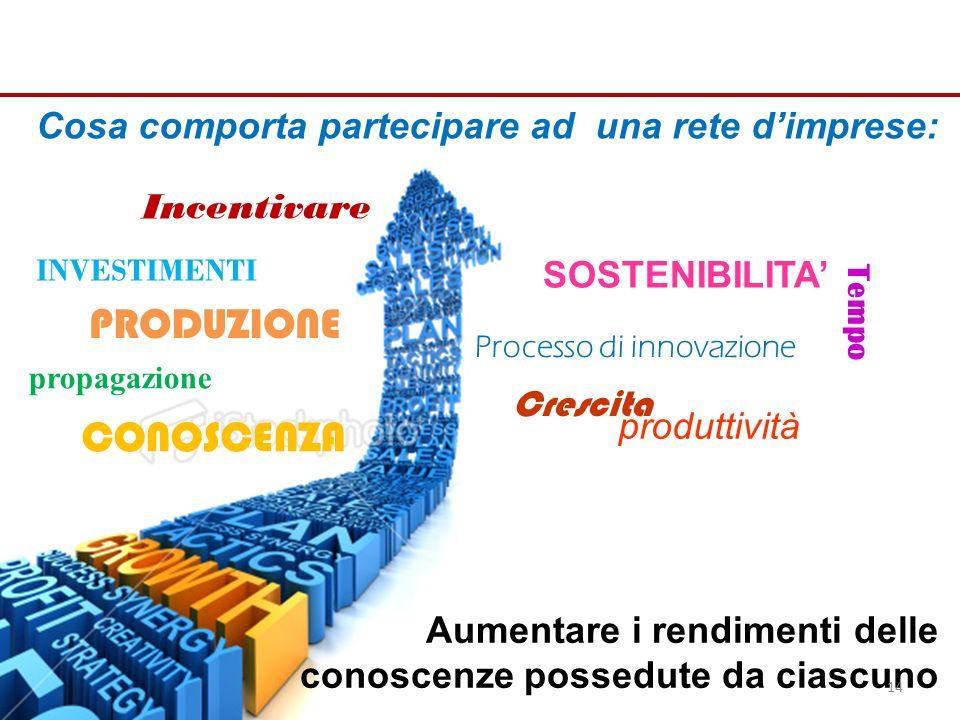 Aumentare i rendimenti delle conoscenze possedute da ciascuno Cosa comporta partecipare ad una rete dimprese: PRODUZIONE Incentivare INVESTIMENTI SOSTENIBILITA Tempo Processo di innovazione Crescita produttività propagazione CONOSCENZA 14