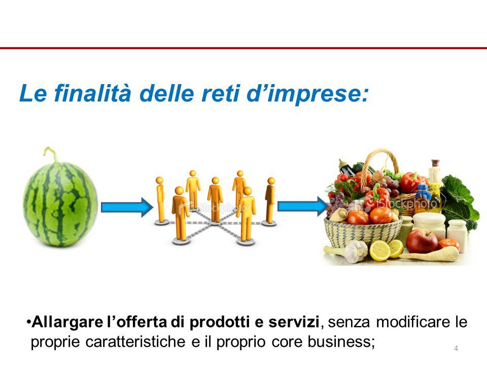 Le finalità delle reti dimprese: Allargare lofferta di prodotti e servizi, senza modificare le proprie caratteristiche e il proprio core business; 4