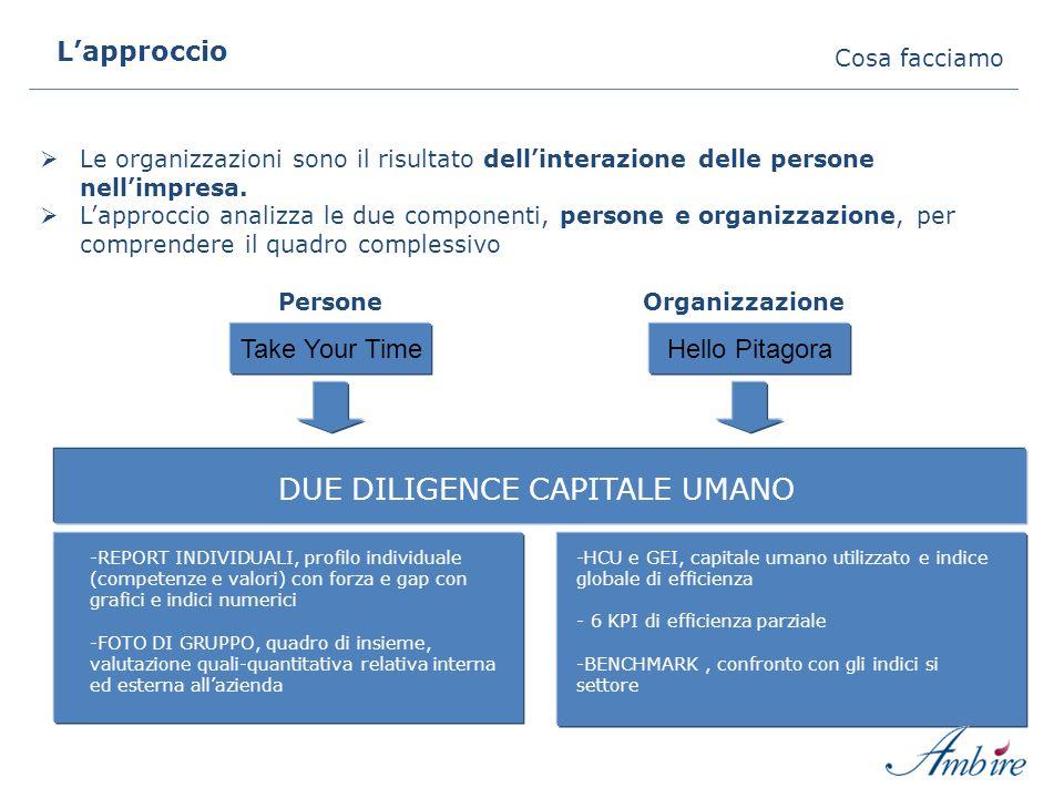 Lapproccio Cosa facciamo Hello Pitagora PersoneOrganizzazione DUE DILIGENCE CAPITALE UMANO Le organizzazioni sono il risultato dellinterazione delle p
