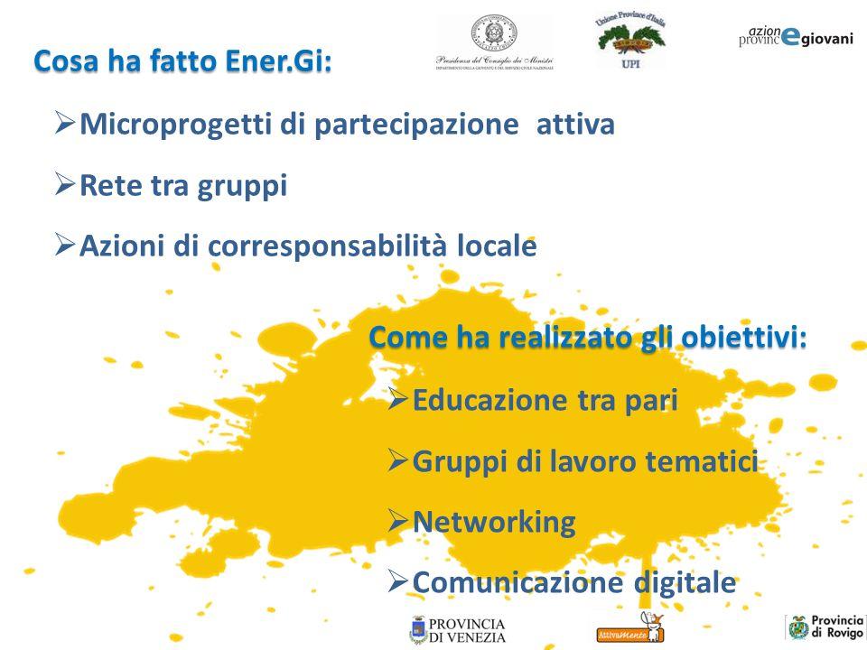 Cosa ha fatto Ener.Gi: Come ha realizzato gli obiettivi: Microprogetti di partecipazione attiva Rete tra gruppi Azioni di corresponsabilità locale Edu