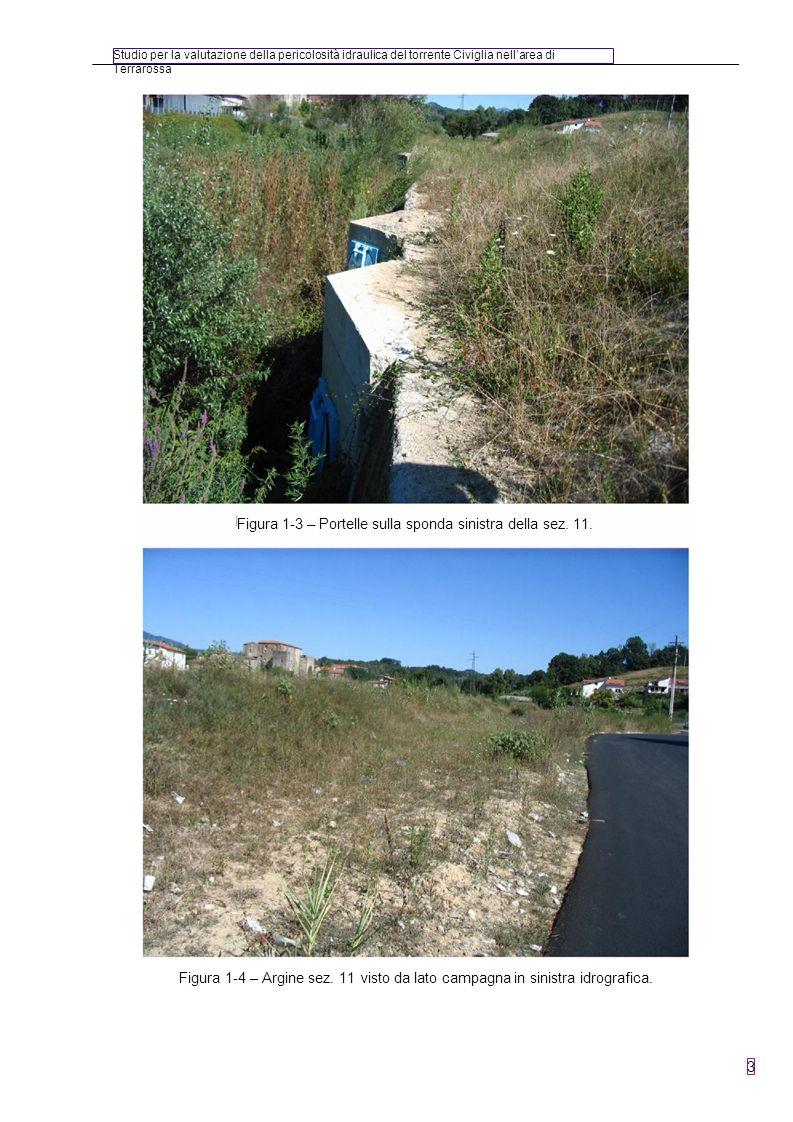 Studio per la valutazione della pericolosità idraulica del torrente Civiglia nellarea di Terrarossa 4 Figura 1-5 – Particolare area golenale in sinistra vista dalla sez.