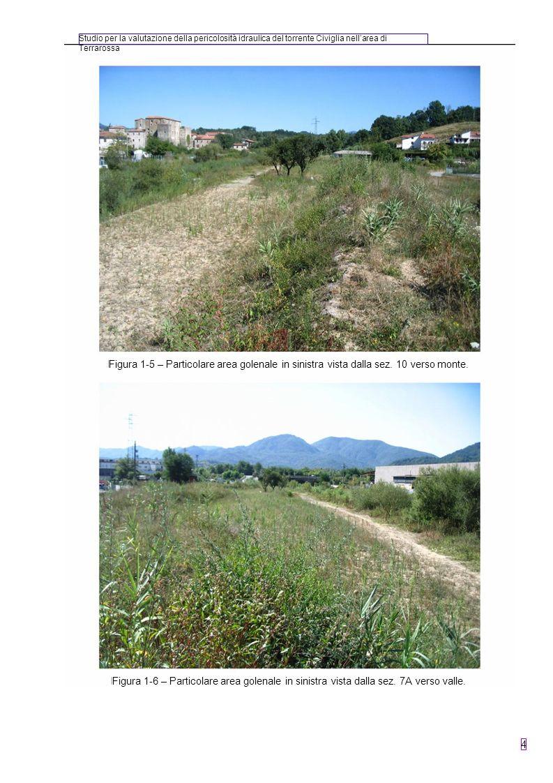 Studio per la valutazione della pericolosità idraulica del torrente Civiglia nellarea di Terrarossa 4 Figura 1-5 – Particolare area golenale in sinist