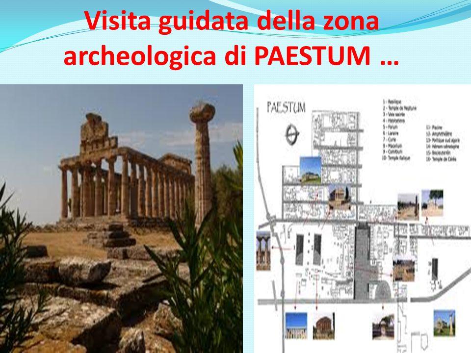 Visita guidata della zona archeologica di PAESTUM …