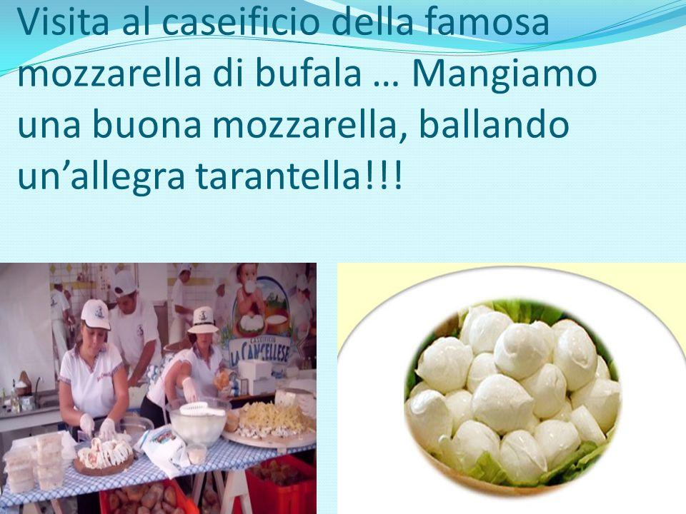 Visita al caseificio della famosa mozzarella di bufala … Mangiamo una buona mozzarella, ballando unallegra tarantella!!!