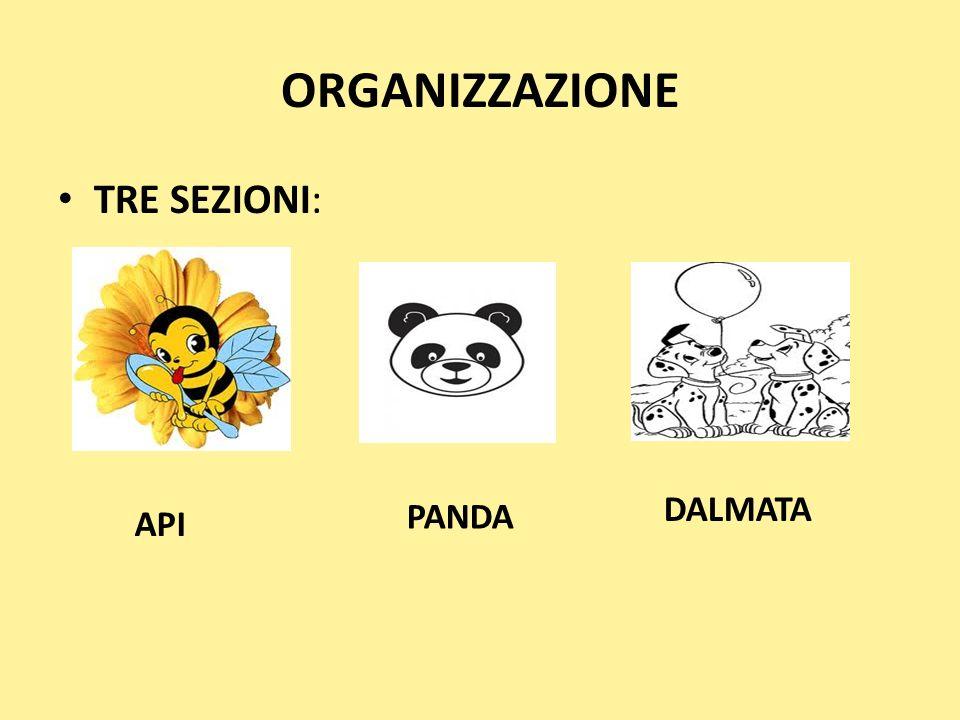 ORGANIZZAZIONE TRE SEZIONI: API PANDA DALMATA