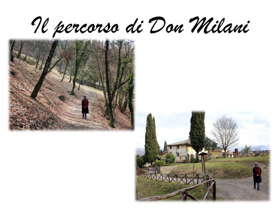 Il percorso di Don Milani
