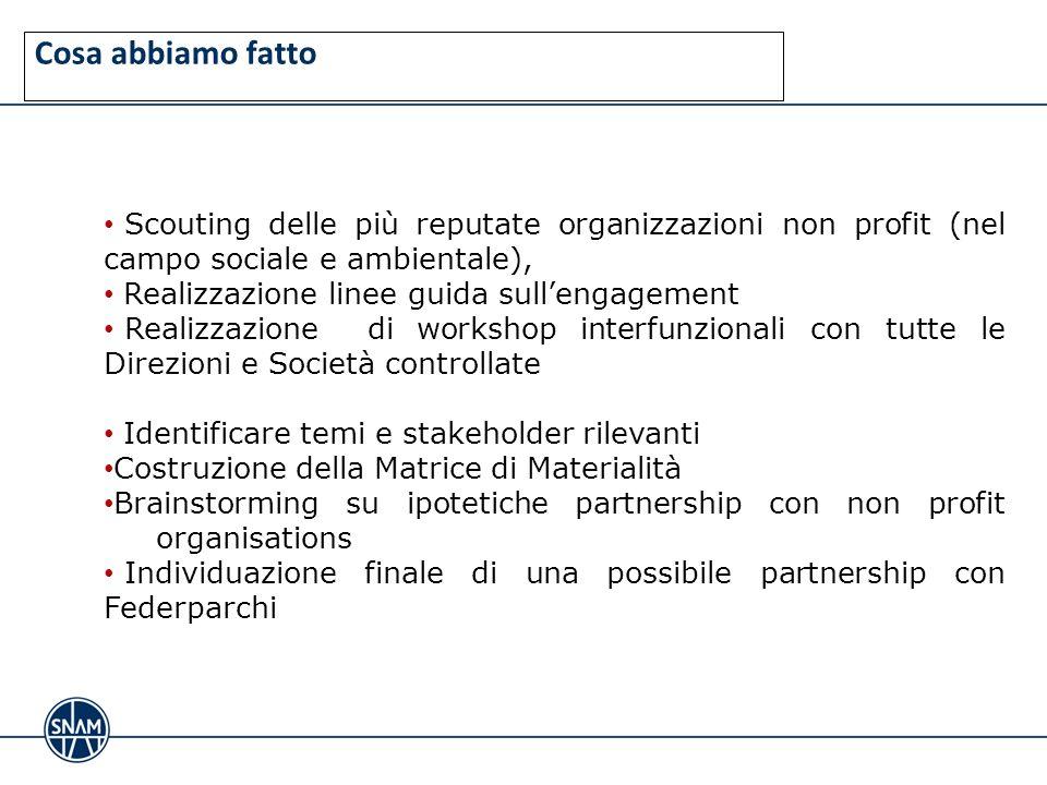 Cosa abbiamo fatto Scouting delle più reputate organizzazioni non profit (nel campo sociale e ambientale), Realizzazione linee guida sullengagement Re