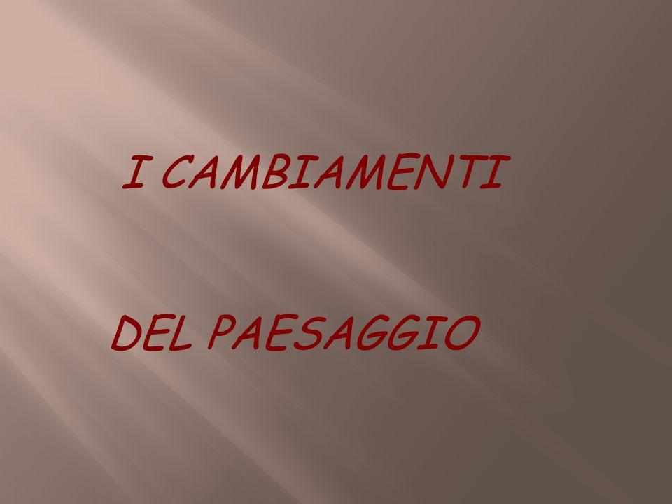 I CAMBIAMENTI DEL PAESAGGIO