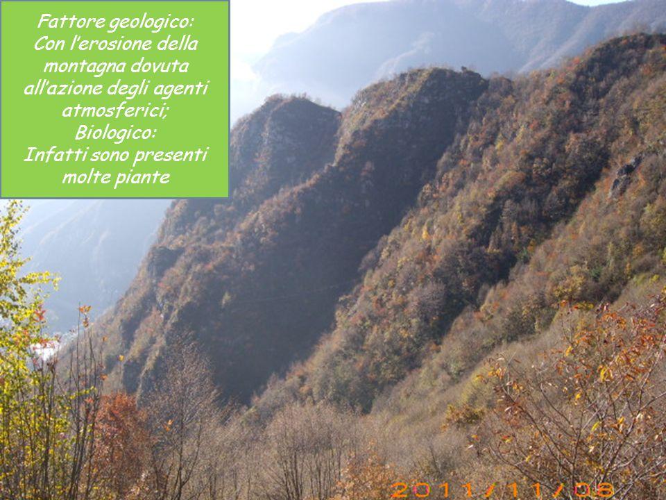 Fattore geologico: Con lerosione della montagna dovuta allazione degli agenti atmosferici; Biologico: Infatti sono presenti molte piante
