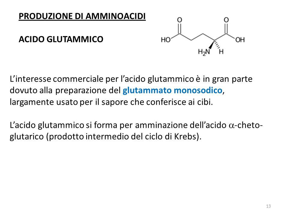 PRODUZIONE DI AMMINOACIDI ACIDO GLUTAMMICO Linteresse commerciale per lacido glutammico è in gran parte dovuto alla preparazione del glutammato monosodico, largamente usato per il sapore che conferisce ai cibi.