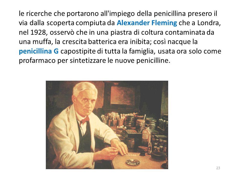 23 le ricerche che portarono all impiego della penicillina presero il via dalla scoperta compiuta da Alexander Fleming che a Londra, nel 1928, osservò che in una piastra di coltura contaminata da una muffa, la crescita batterica era inibita; così nacque la penicillina G capostipite di tutta la famiglia, usata ora solo come profarmaco per sintetizzare le nuove penicilline.