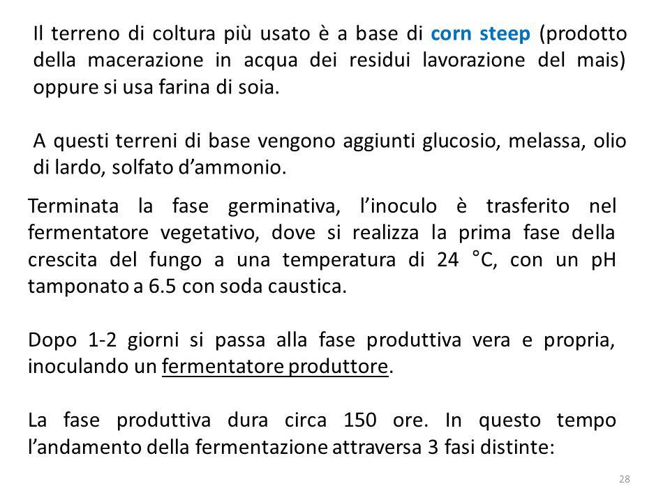 28 Il terreno di coltura più usato è a base di corn steep (prodotto della macerazione in acqua dei residui lavorazione del mais) oppure si usa farina di soia.
