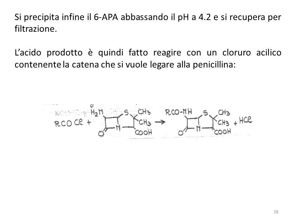 Si precipita infine il 6-APA abbassando il pH a 4.2 e si recupera per filtrazione.