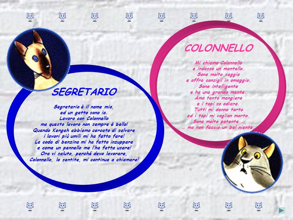 SEGRETARIO Segretario è il nome mio, ed un gatto sono io.
