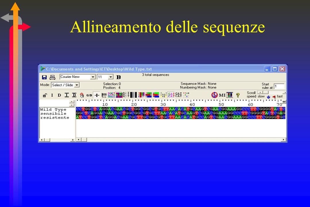 Interpretazione Confronto con la sequenza wild type Identità 100% = sensibilità Mutazioni = resistenza Conferma con lantibiogramma fenotipico