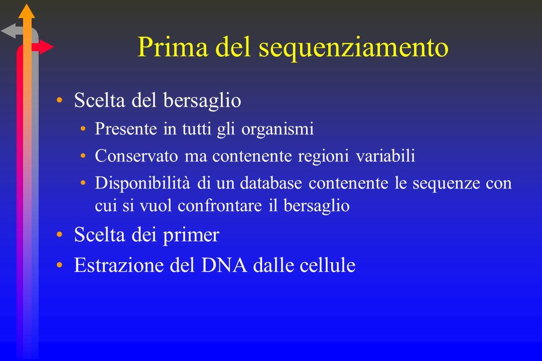 Prima del sequenziamento Scelta del bersaglio Presente in tutti gli organismi Conservato ma contenente regioni variabili Disponibilità di un database contenente le sequenze con cui si vuol confrontare il bersaglio Scelta dei primer Estrazione del DNA dalle cellule