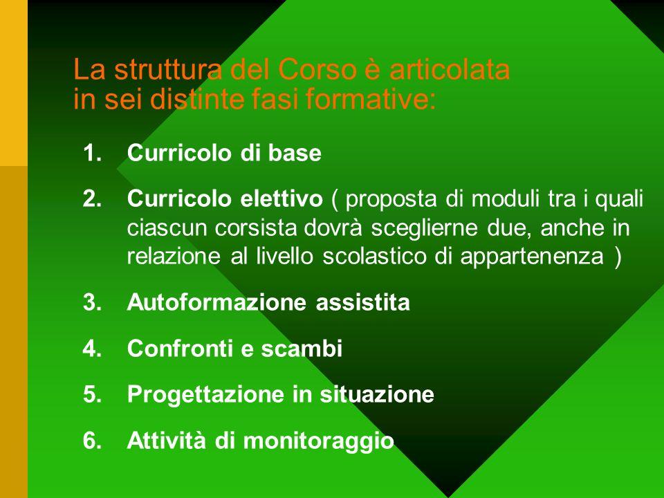 La struttura del Corso è articolata in sei distinte fasi formative: 1.Curricolo di base 2.Curricolo elettivo ( proposta di moduli tra i quali ciascun