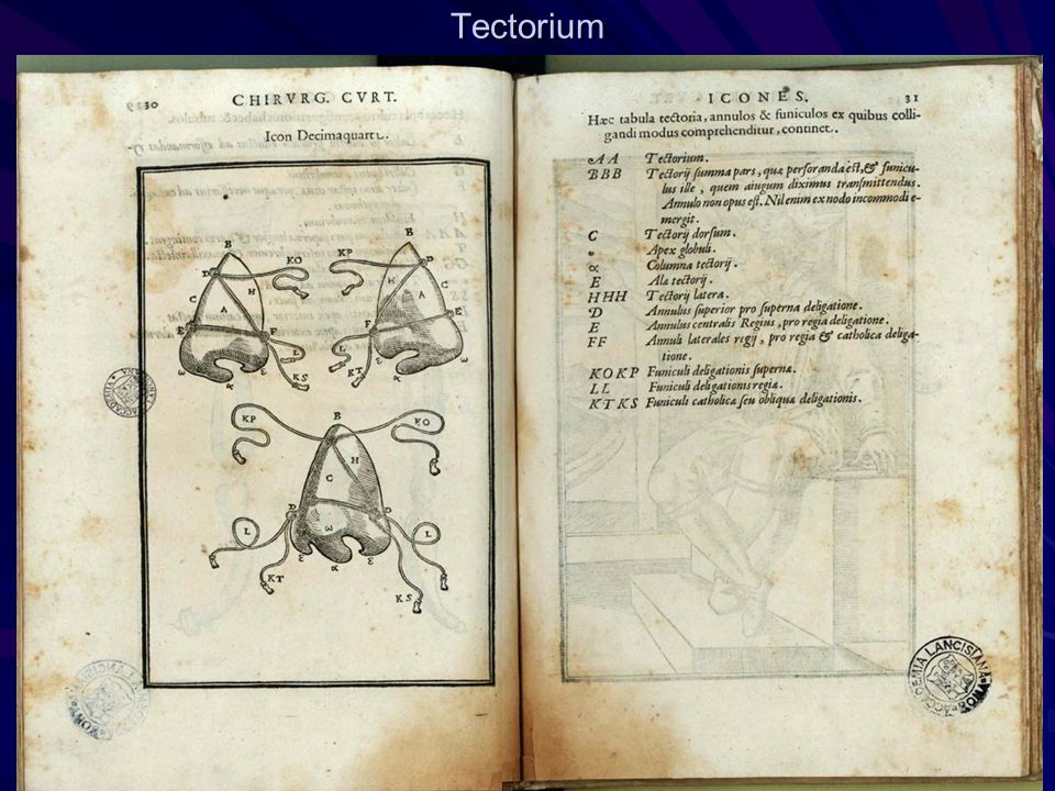 Tectorium