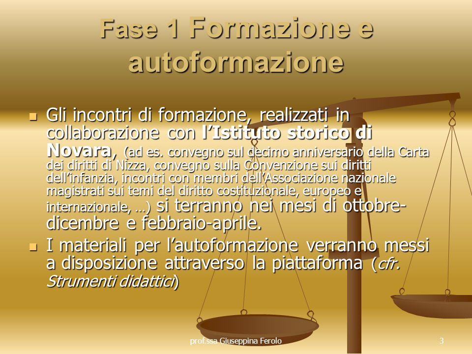 prof.ssa Giuseppina Ferolo24 Fase 4 Monitoraggio in itinere e valutazione del progetto I docenti partecipanti al progetto procederanno a verificare le competenze raggiunte dalla propria classe durante il percorso attivato (cfr.