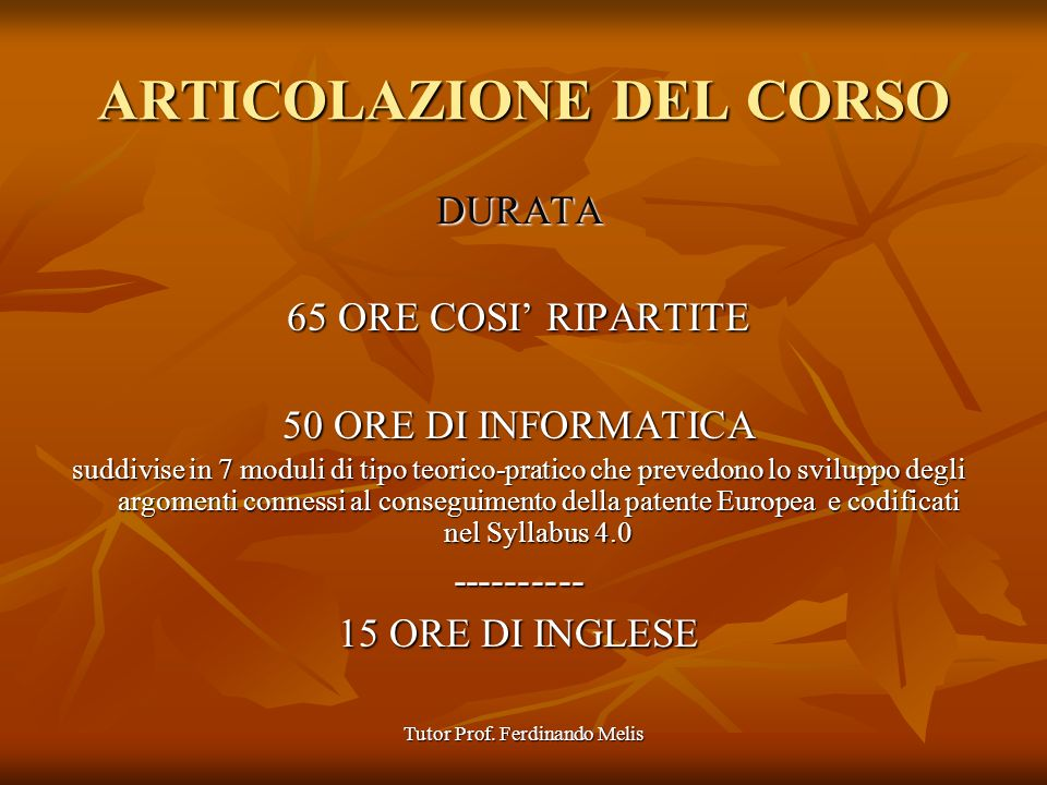 Tutor Prof. Ferdinando Melis Parte esterna skill-card