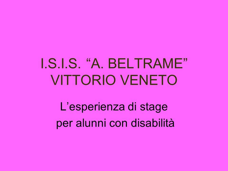 I.S.I.S. A. BELTRAME VITTORIO VENETO Lesperienza di stage per alunni con disabilità