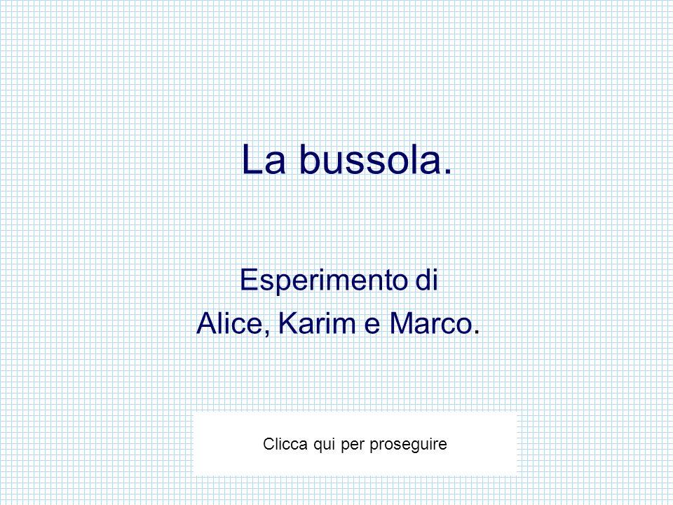 La bussola. Esperimento di Alice, Karim e Marco. Clicca qui per proseguire