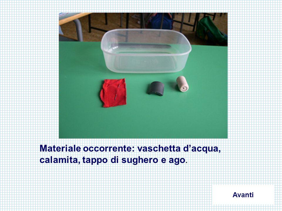 Materiale occorrente: vaschetta dacqua, calamita, tappo di sughero e ago. Avanti