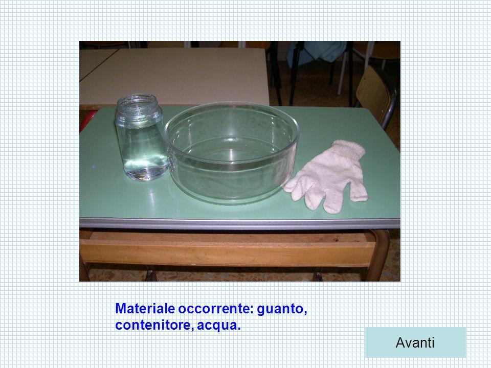 Materiale occorrente: guanto, contenitore, acqua. Avanti