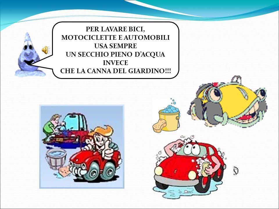 PER LAVARE BICI, MOTOCICLETTE E AUTOMOBILI USA SEMPRE UN SECCHIO PIENO DACQUA INVECE CHE LA CANNA DEL GIARDINO!!!