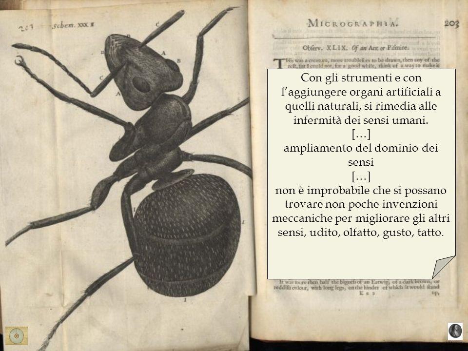 bibligrafia Con gli strumenti e con laggiungere organi artificiali a quelli naturali, si rimedia alle infermità dei sensi umani. […] ampliamento del d