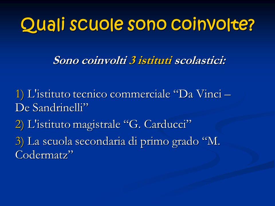 Quali scuole sono coinvolte? Sono coinvolti 3 istituti scolastici: 1) L'istituto tecnico commerciale Da Vinci – De Sandrinelli 2) L'istituto magistral