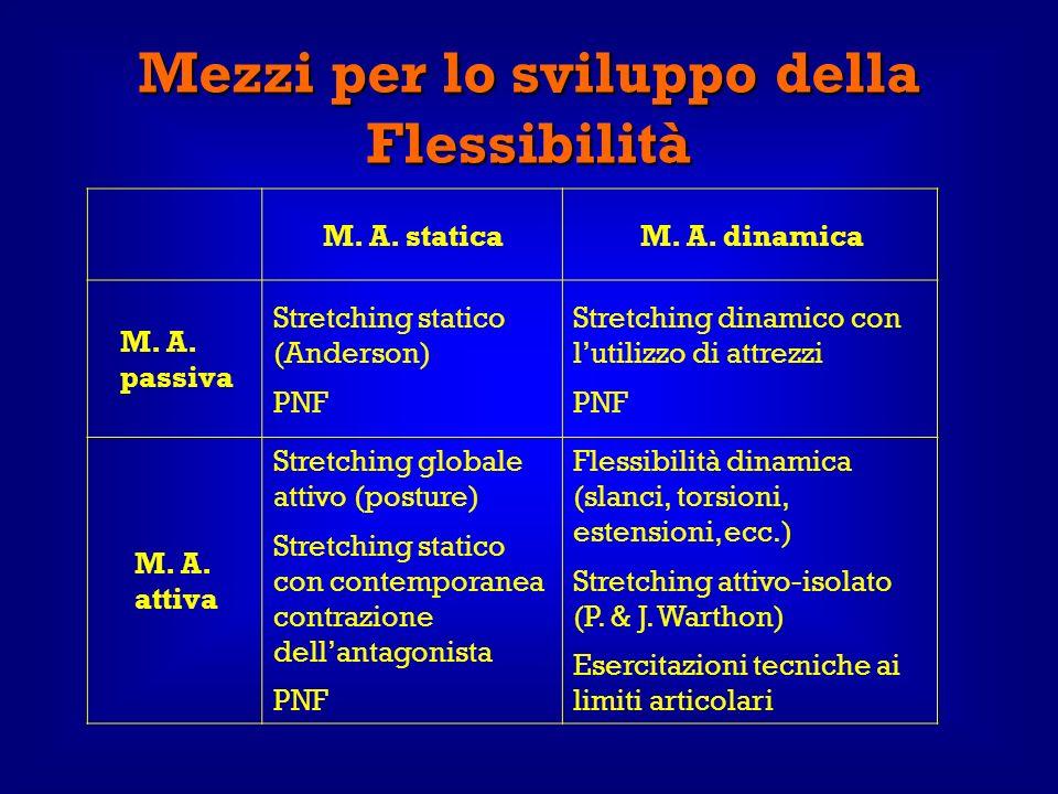Mezzi per lo sviluppo della Flessibilità M. A. staticaM. A. dinamica M. A. passiva Stretching statico (Anderson) PNF Stretching dinamico con lutilizzo