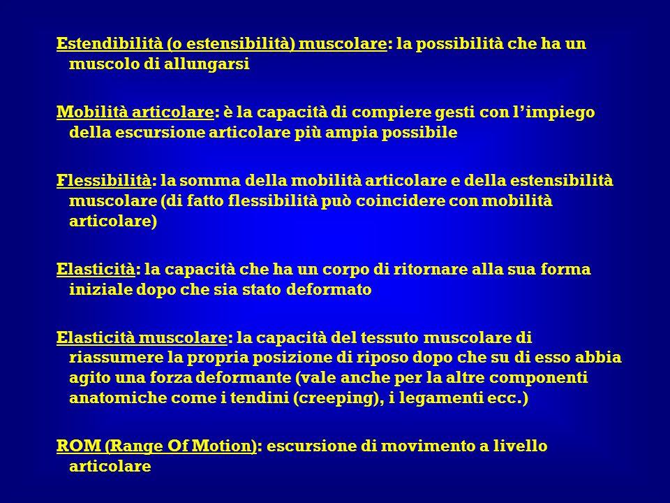 Estendibilità (o estensibilità) muscolare: la possibilità che ha un muscolo di allungarsi Mobilità articolare: è la capacità di compiere gesti con lim