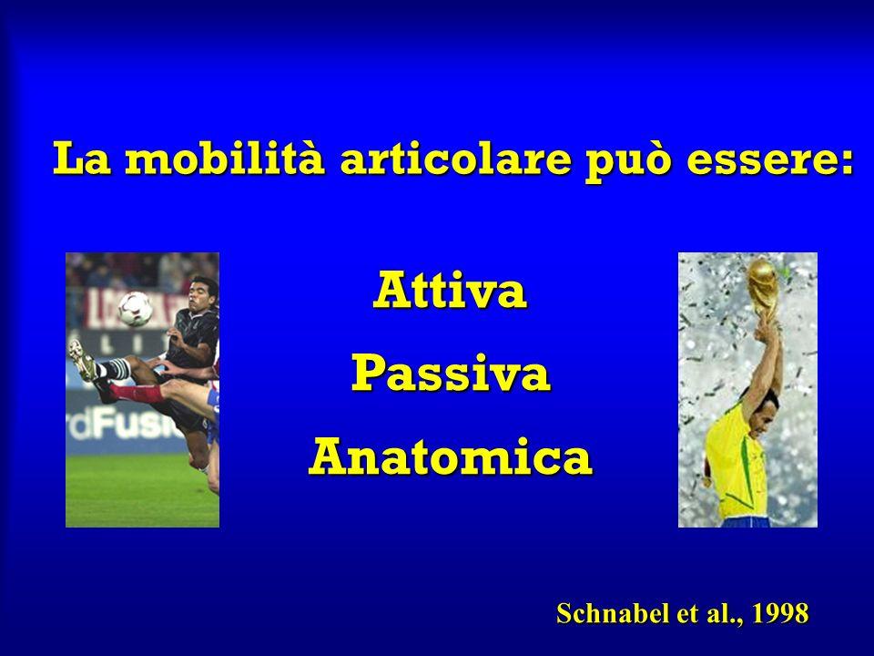 La mobilità articolare può essere: Attiva Passiva Anatomica Schnabel et al., 1998