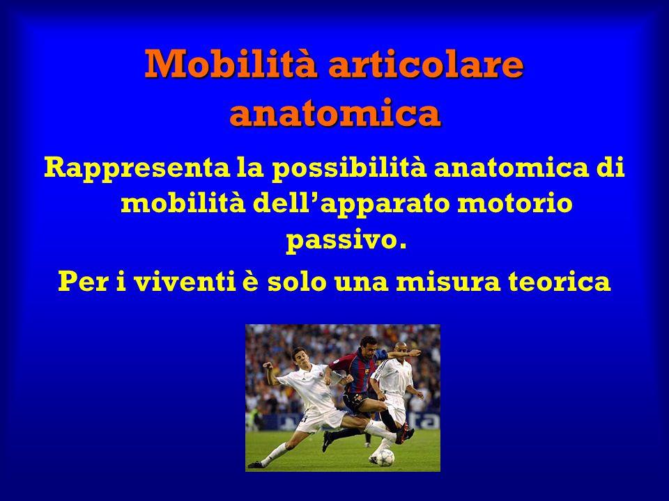 Mobilità articolare anatomica Rappresenta la possibilità anatomica di mobilità dellapparato motorio passivo. Per i viventi è solo una misura teorica