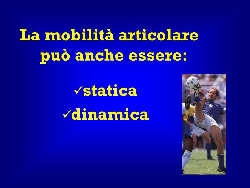 La mobilità articolare può anche essere: statica dinamica