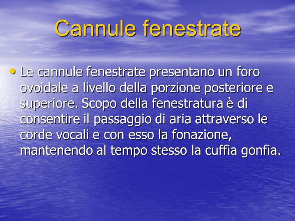 Cannule fenestrate Le cannule fenestrate presentano un foro ovoidale a livello della porzione posteriore e superiore.
