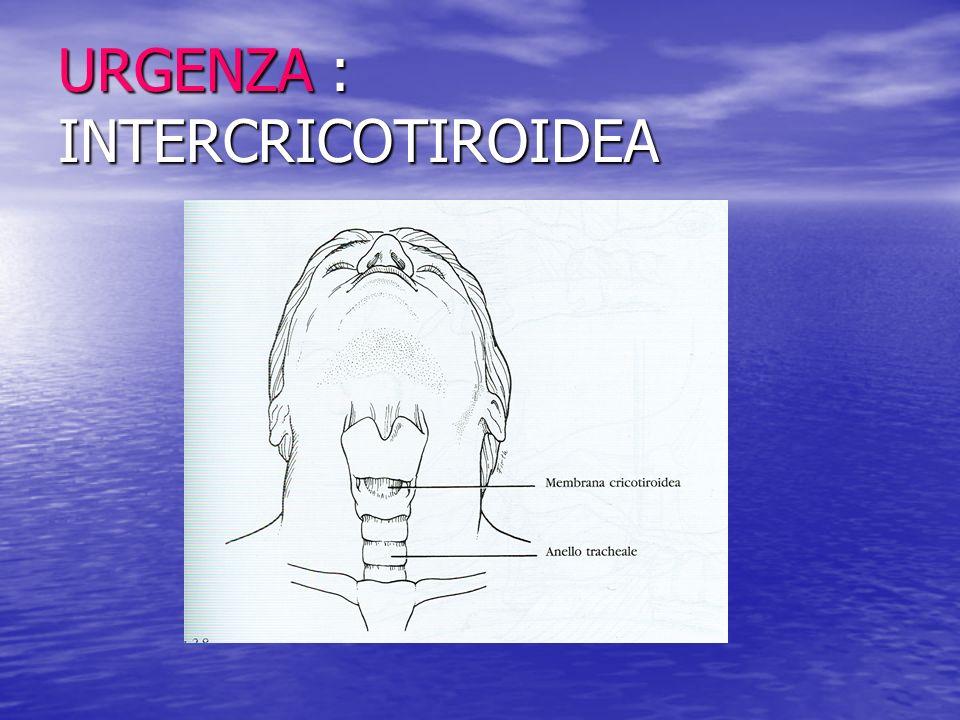 Gestione durante la fonazione La fonazione in condizioni normali è ottenuta grazie al passaggio di aria proveniente dai polmoni attraverso le corde vocali.