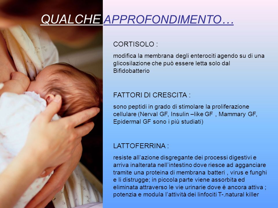 COMPOSIZIONE DEL COLOSTRO Fondamentale è la funzione protettiva Numerose cellule del sistema immunitario materno ( macrofagi all80%, neutrofili e linfociti) IgA secretorie ( 1gr/dl ) con funzioni antibatteriche ma anche di blocco di sostanze eterologhe (prevenzione di allergie) Lisozima (0,3 gr./dl ) Oligosaccaridi ( 2gr./dl ) Lattoferrina Beta-carotene Complemento