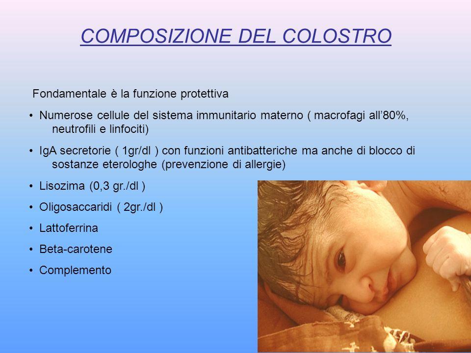 COMPOSIZIONE DEL COLOSTRO Fondamentale è la funzione protettiva Numerose cellule del sistema immunitario materno ( macrofagi all80%, neutrofili e linf