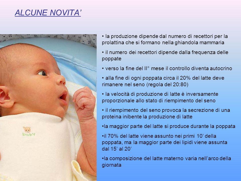 ALCUNE NOVITA la produzione dipende dal numero di recettori per la prolattina che si formano nella ghiandola mammaria il numero dei recettori dipende